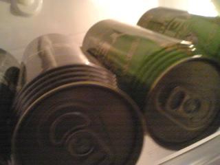 【写真】保護したエビスを冷蔵庫に並べる
