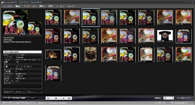 【スクリーンショット】Voralent Invidiを利用してKeeper Of The Seven Keys Part 1のアートワークを取得。
