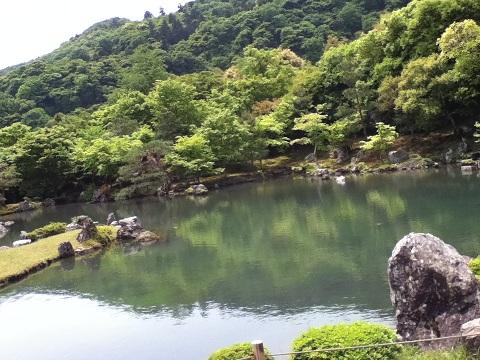 【写真】天龍寺の庭園