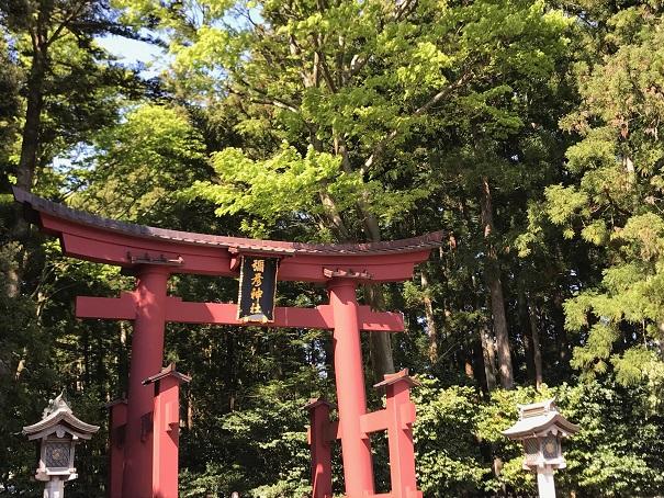 【写真】彌彦神社の大鳥居